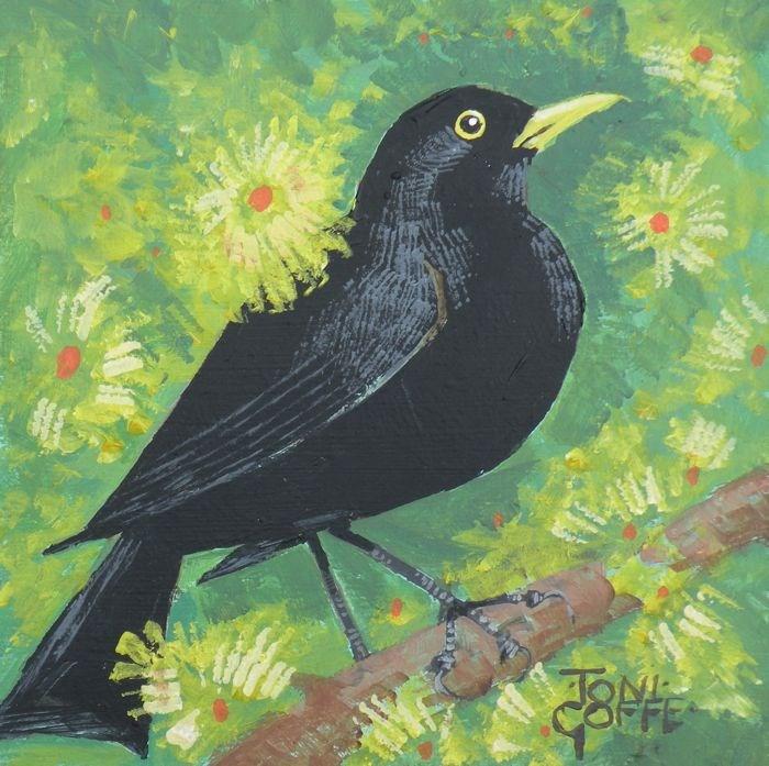 """Black Bird"" original fine art by Toni Goffe"