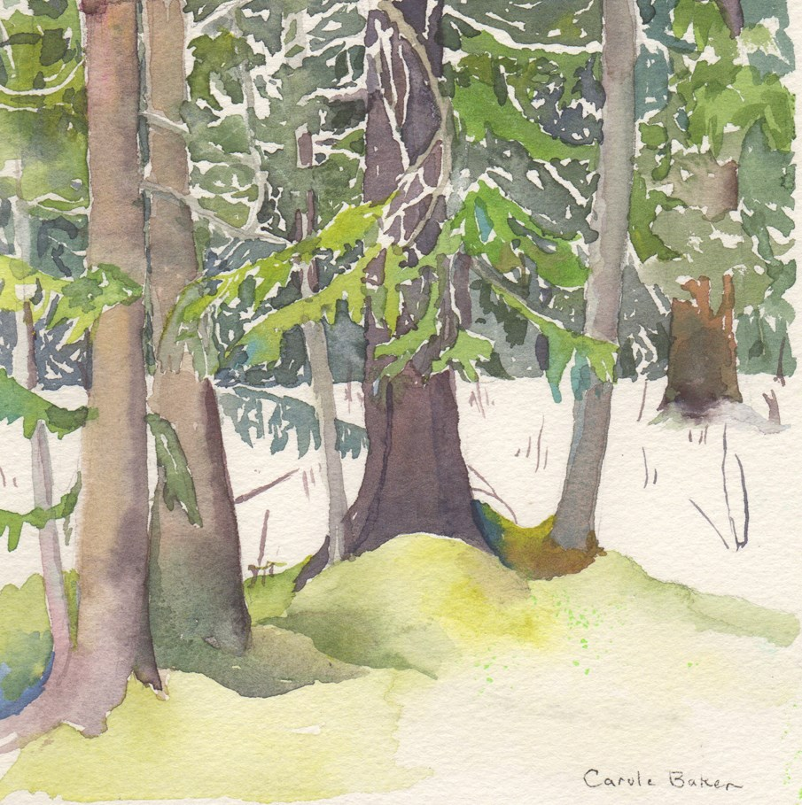 """North Window View II"" original fine art by Carole Baker"