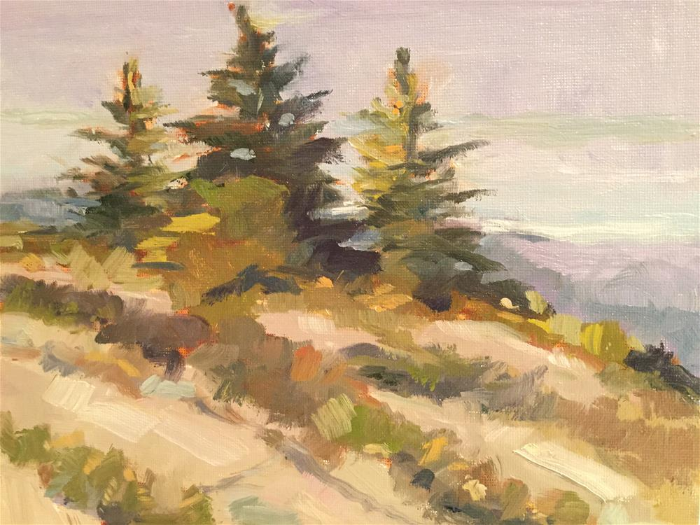 """Acadia Summer"" original fine art by Barb Walker"
