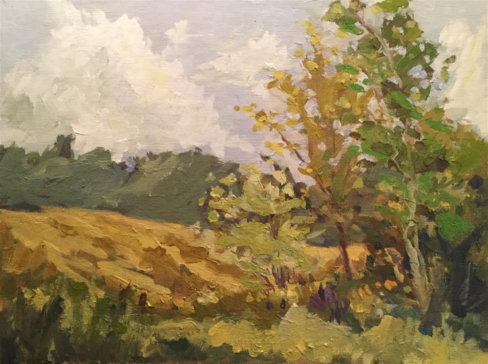 """""""Late Fields"""" original fine art by Barb Walker"""