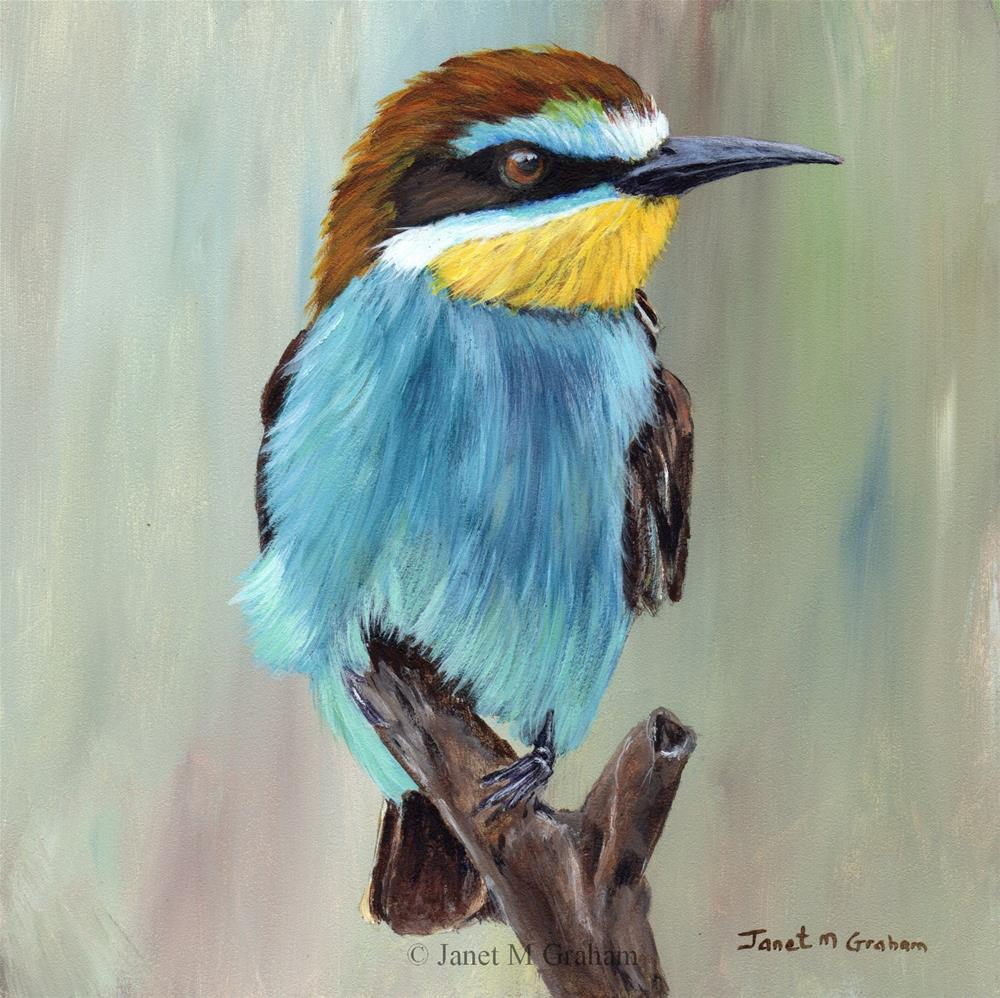 """European Bee - Eater"" original fine art by Janet Graham"