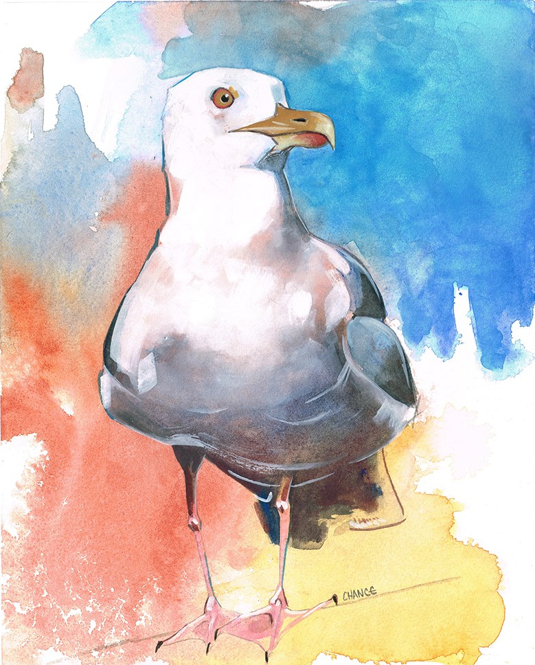 """Seagull"" original fine art by Annabel Chance"