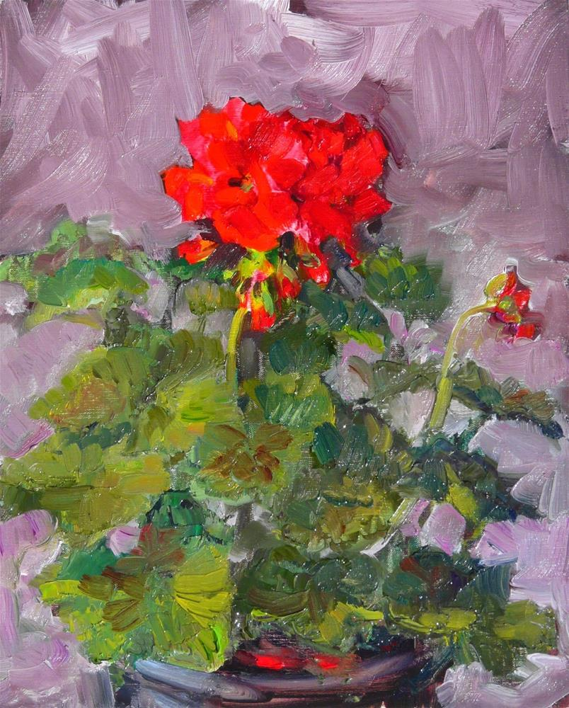 """geraniums before the storm,still life,oil on art panel.10x8,price$200"" original fine art by Joy Olney"
