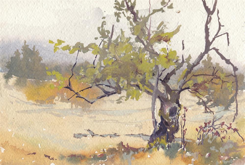 """Little Apple Tree"" original fine art by Vinita Pappas"