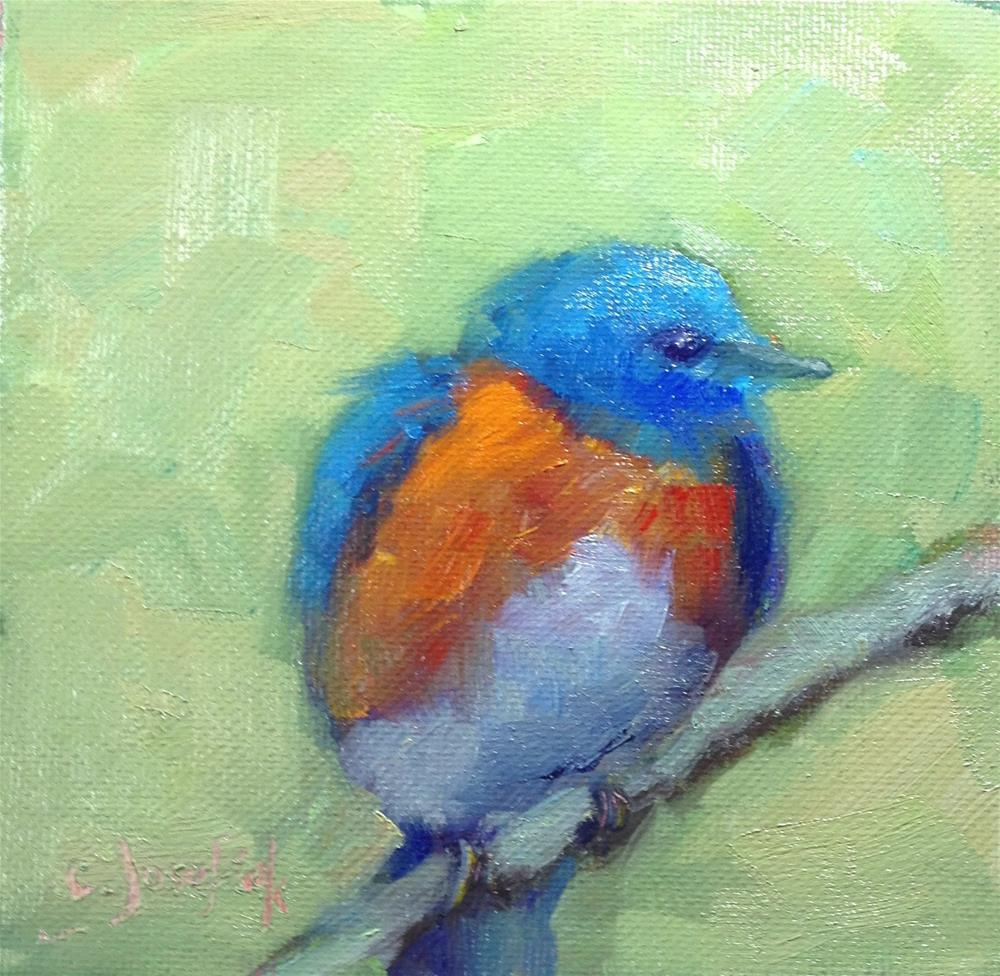 """Blue Bird"" original fine art by Carol Josefiak"