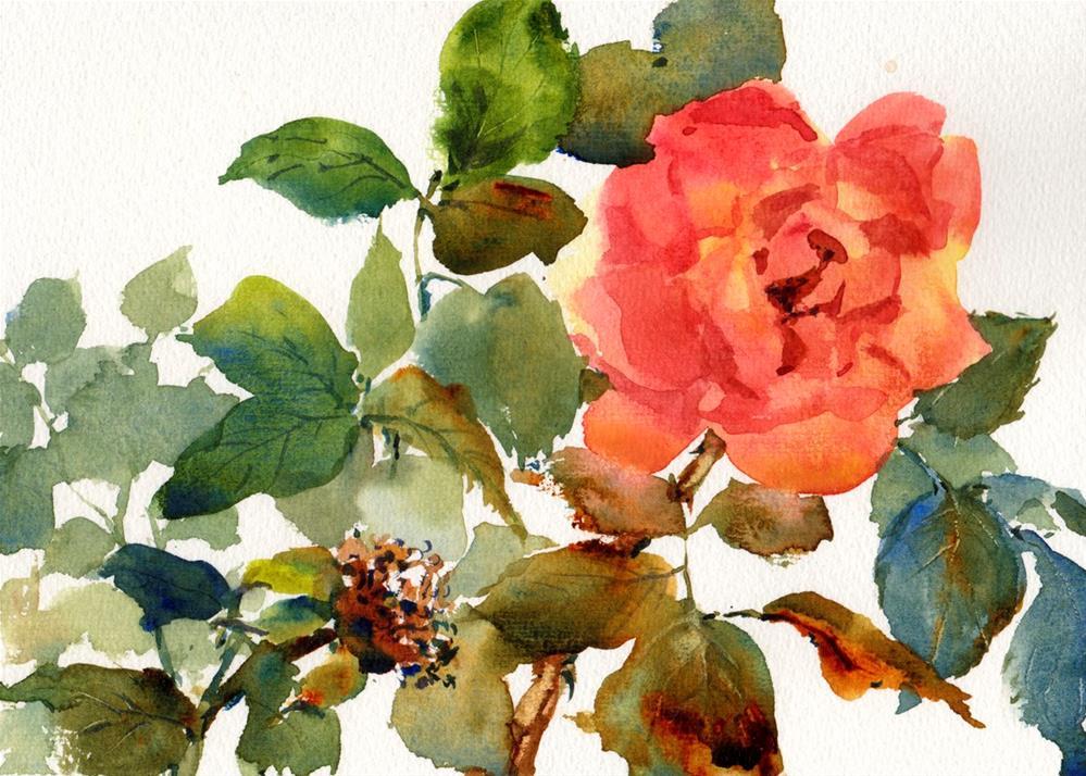 """Sedona Rose"" original fine art by Linda Henry"