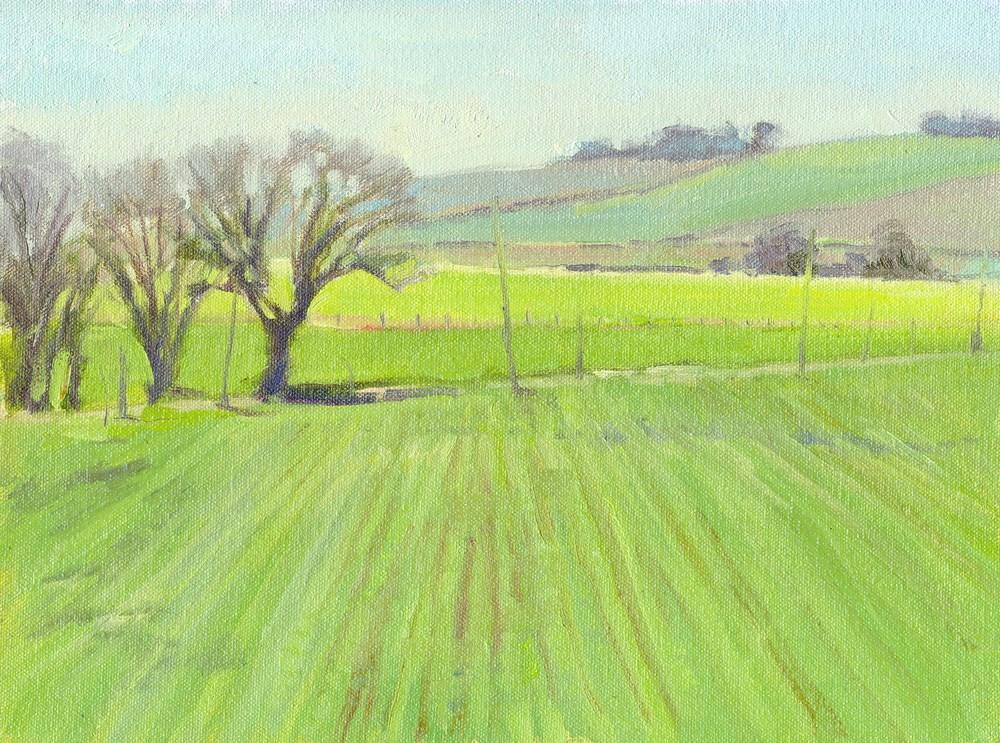 """Green Fields"" original fine art by Kath Reilly"