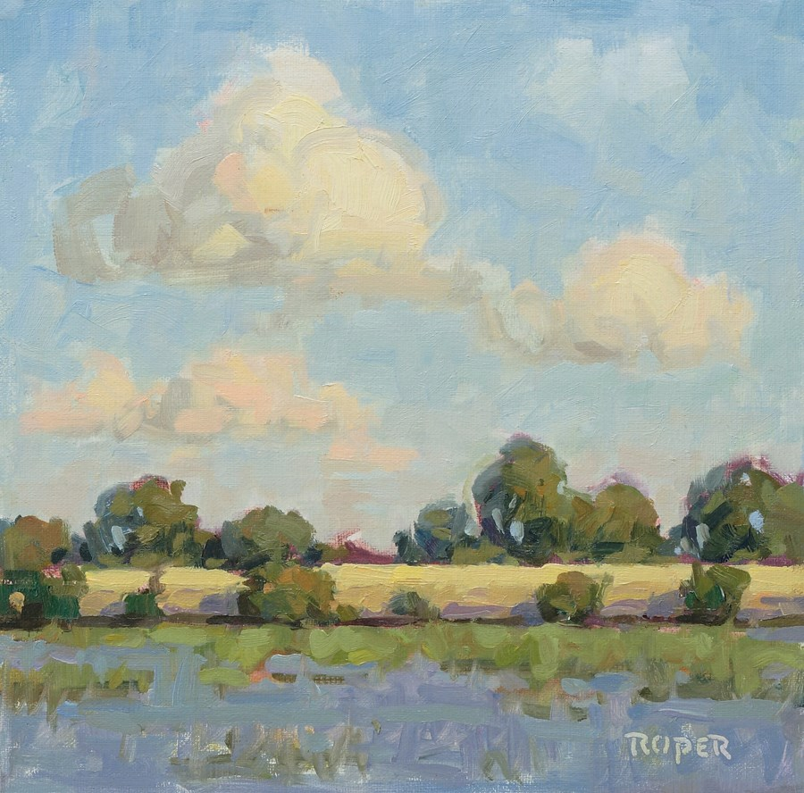 """DAY 14:  The Alligator's Pond"" original fine art by Stuart Roper"
