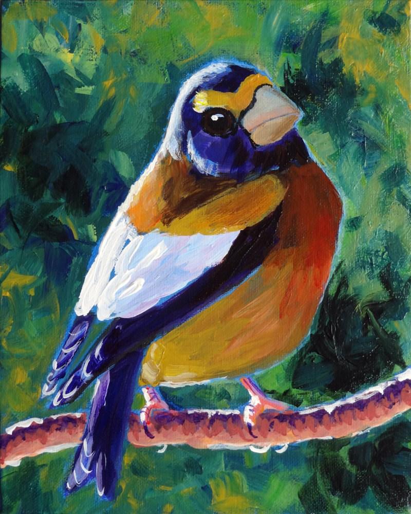 """Evening Grosbeak"" original fine art by Ande Hall"