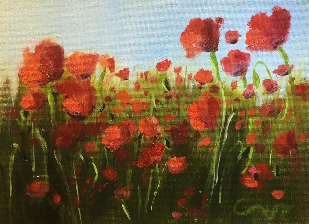 """Red Poppies"" original fine art by Sharon Abbott-Furze"