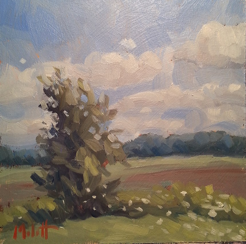 """Hello August Summer Landscape Original Oil Impressionism Painting"" original fine art by Heidi Malott"