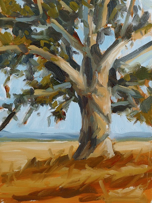 """Sunlit Oak"" original fine art by Adam Houston"