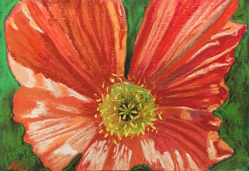 """Red poppy"" original fine art by Natasha Ramras"