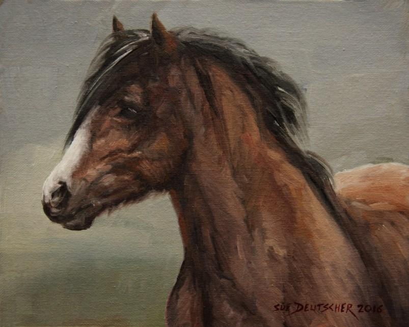 """""""Pony Face"""" original fine art by Sue Deutscher"""