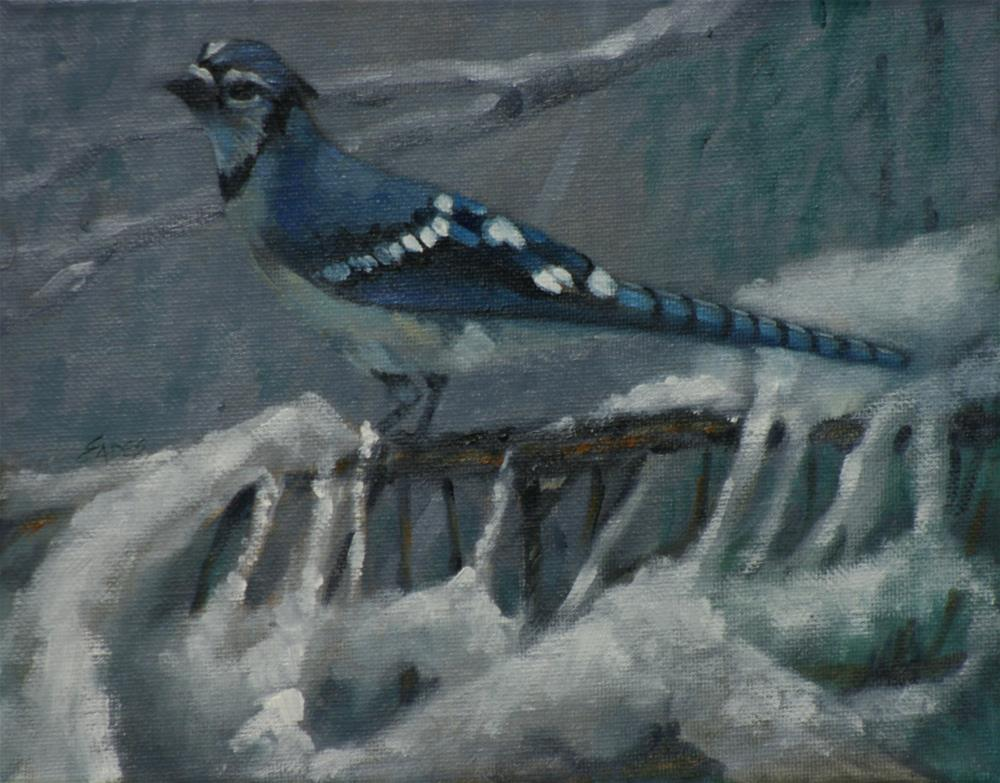 """Cool Jay"" original fine art by Linda Eades Blackburn"