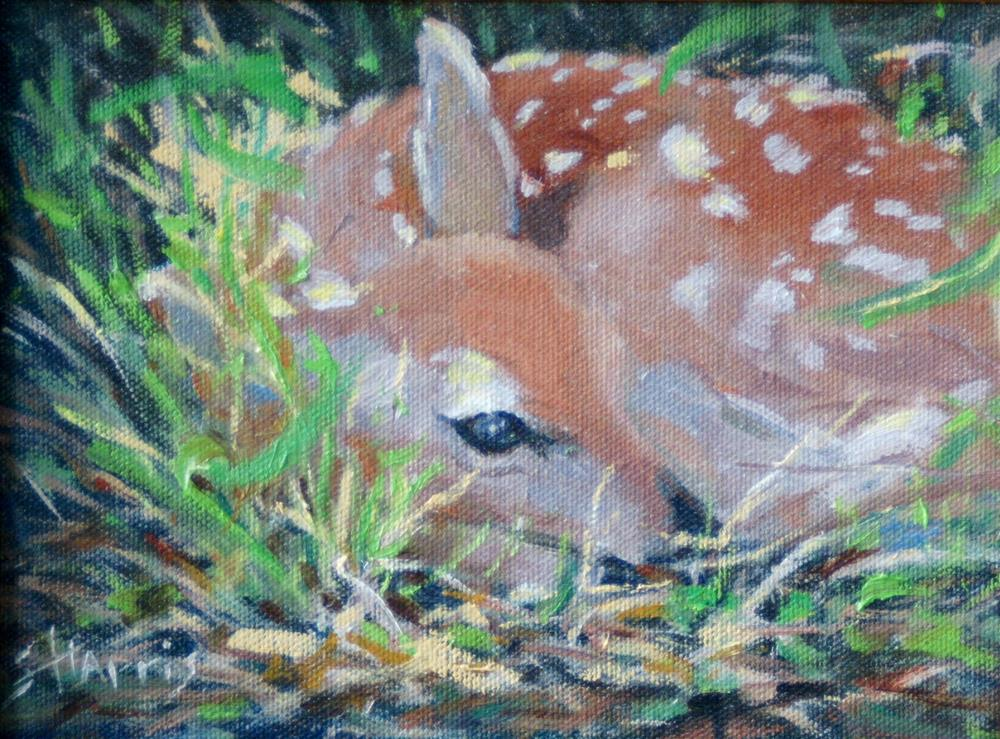 """Laying Low"" original fine art by Sandra L Harris"