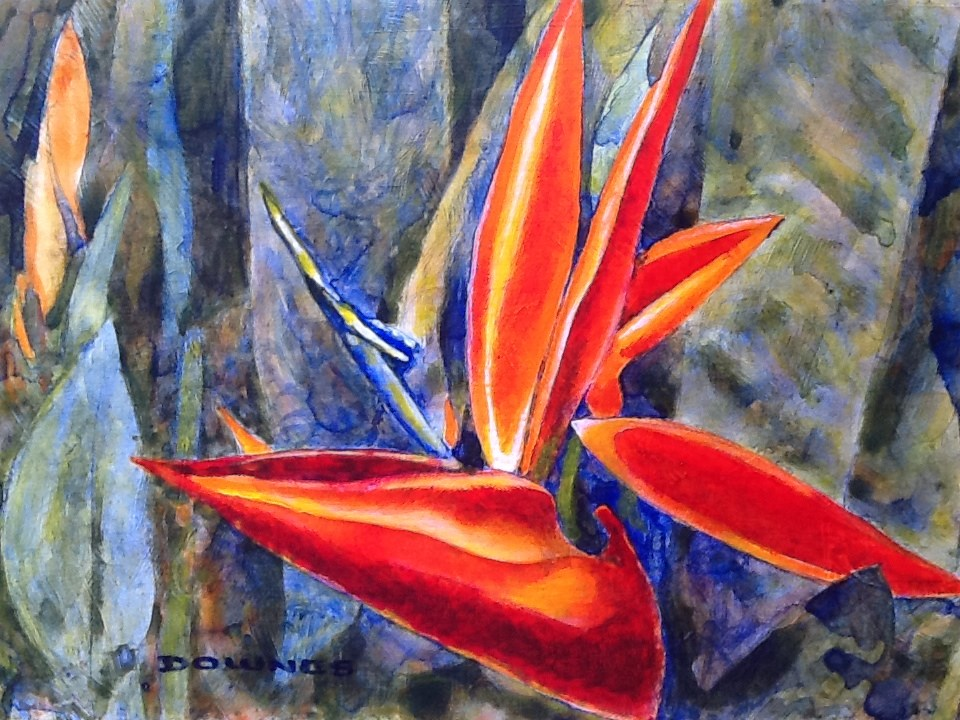 """075 STRELITZIA"" original fine art by Trevor Downes"