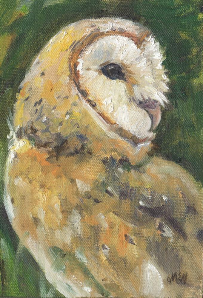 """""""Barn Owl"""" original fine art by Michel McNinch"""