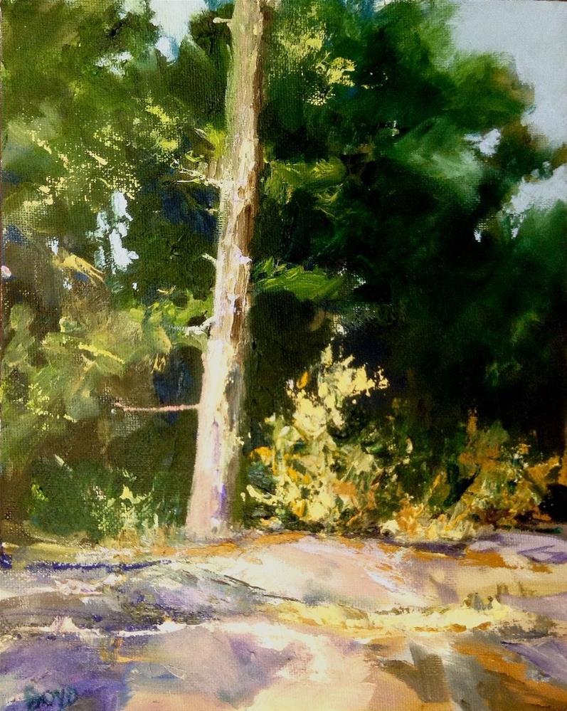 """""""Solo Pine"""" original fine art by Cathy Boyd"""
