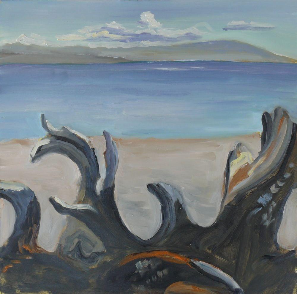 """Driftwood"" original fine art by Darlene Young"