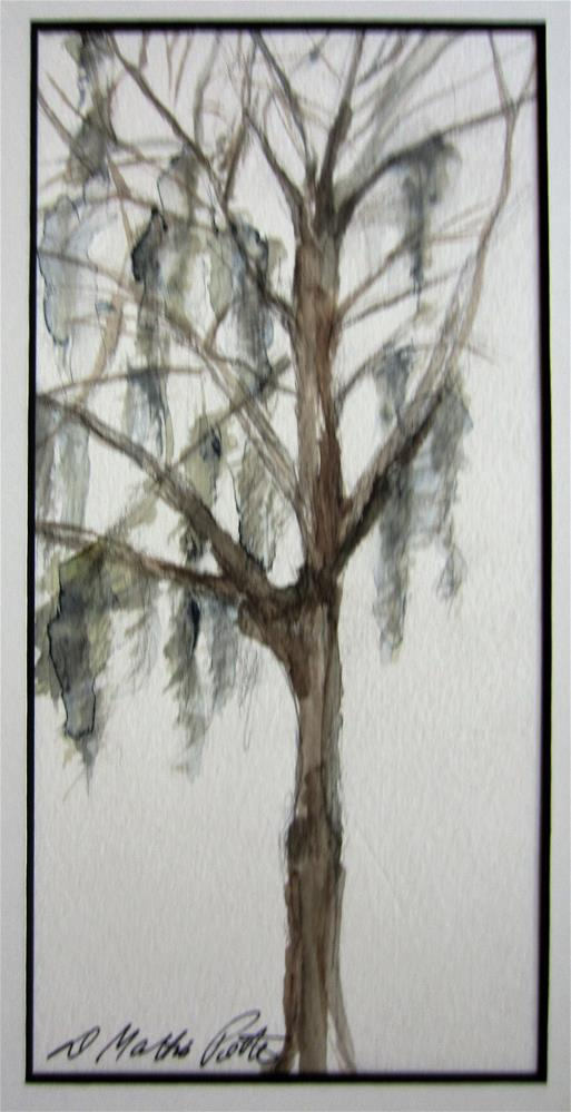 """Willow"" original fine art by Dolores Pettit"