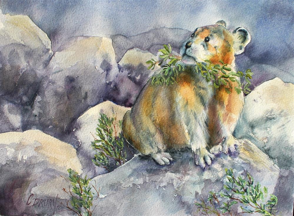 """Pika"" original fine art by Colleen Drury"