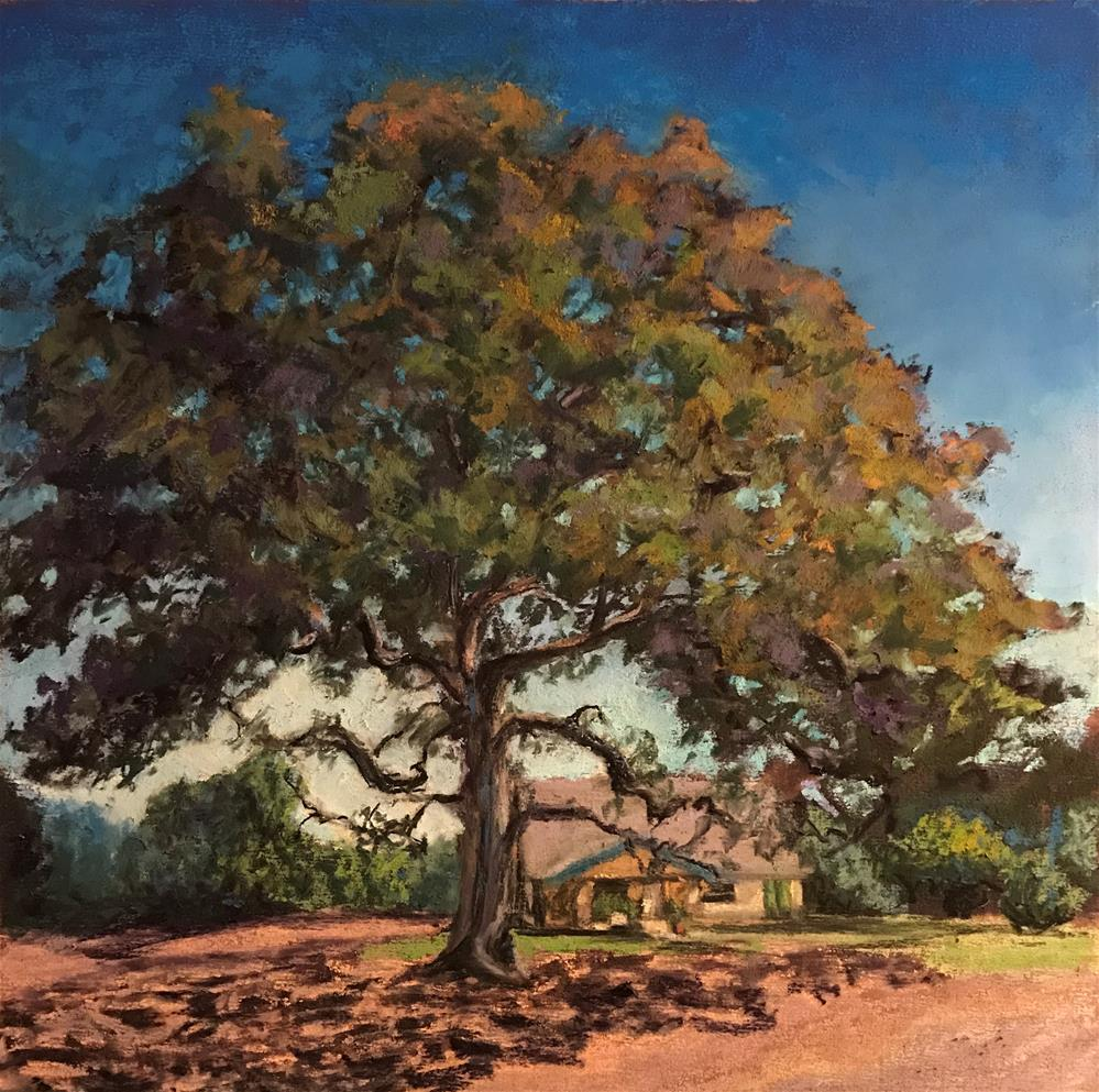 """The Grand Oak"" original fine art by Marti Walker"