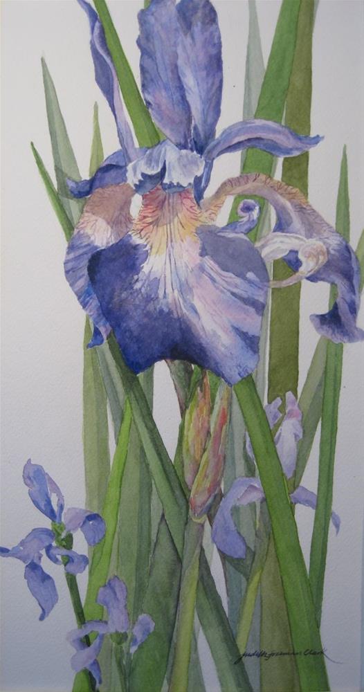 """Royal Purple II"" original fine art by Judith Freeman Clark"