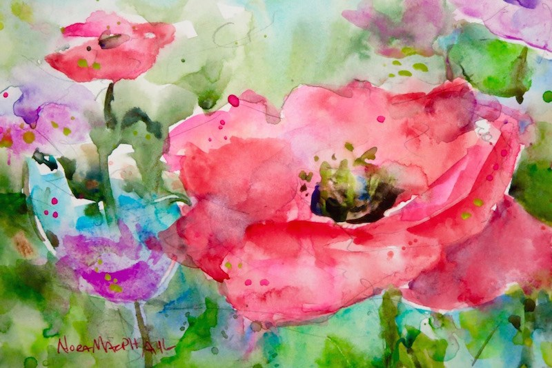 """poppy field"" original fine art by Nora MacPhail"