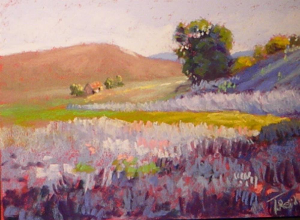 """""""Down range"""" original fine art by Toby Reid"""