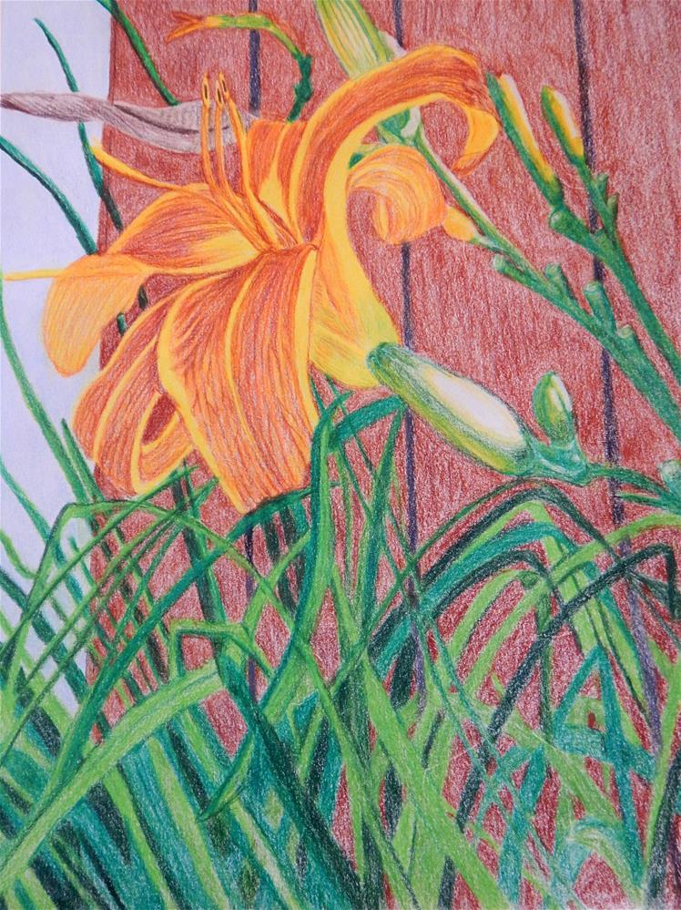 """Daylily #1"" original fine art by Elaine Shortall"