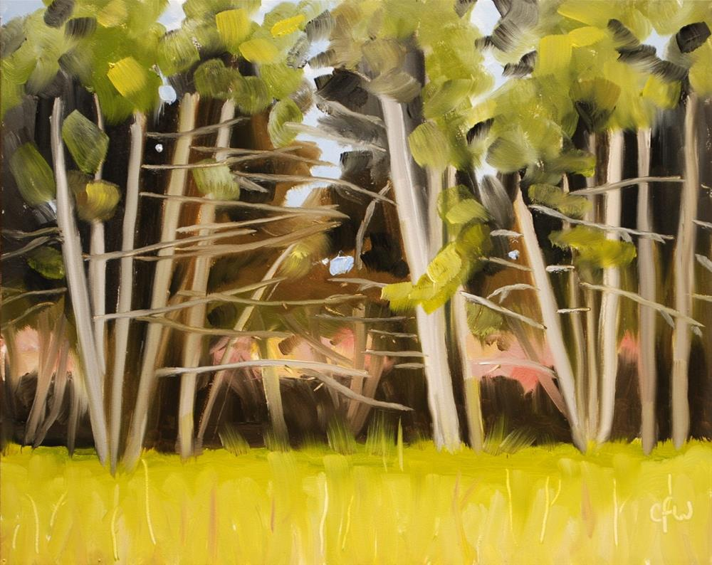 """Cedars by the Road"" original fine art by Gary Westlake"