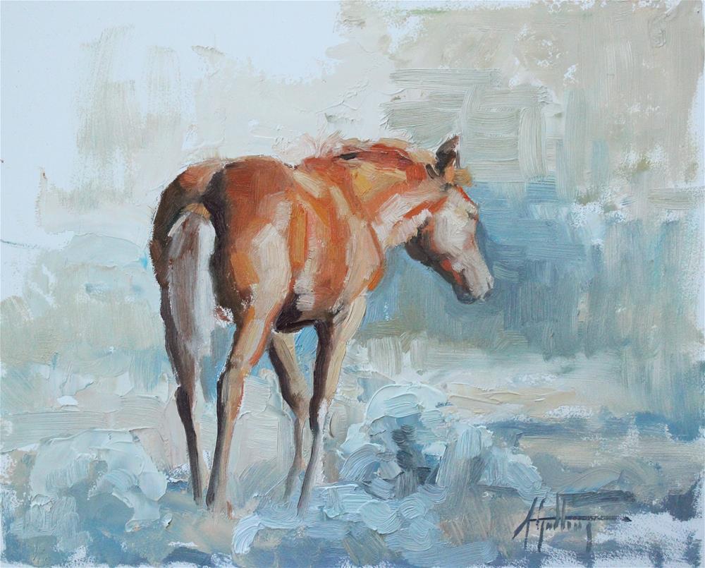 """Wild Foal Study #1"" original fine art by Abigail Gutting"