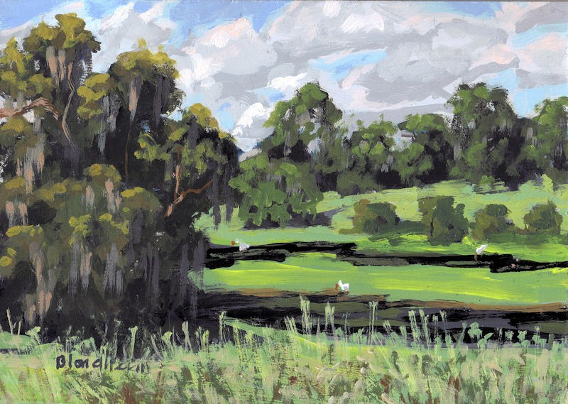 """""""Pond"""" original fine art by Linda Blondheim"""