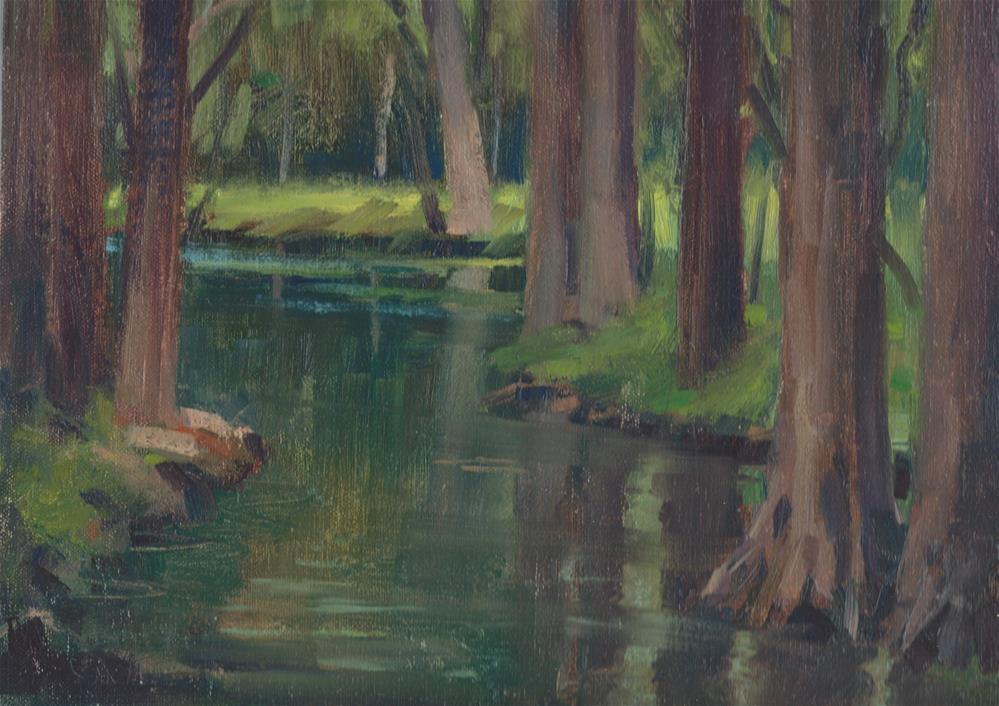 """Wimberly River view"" original fine art by J. Thomas soltesz"
