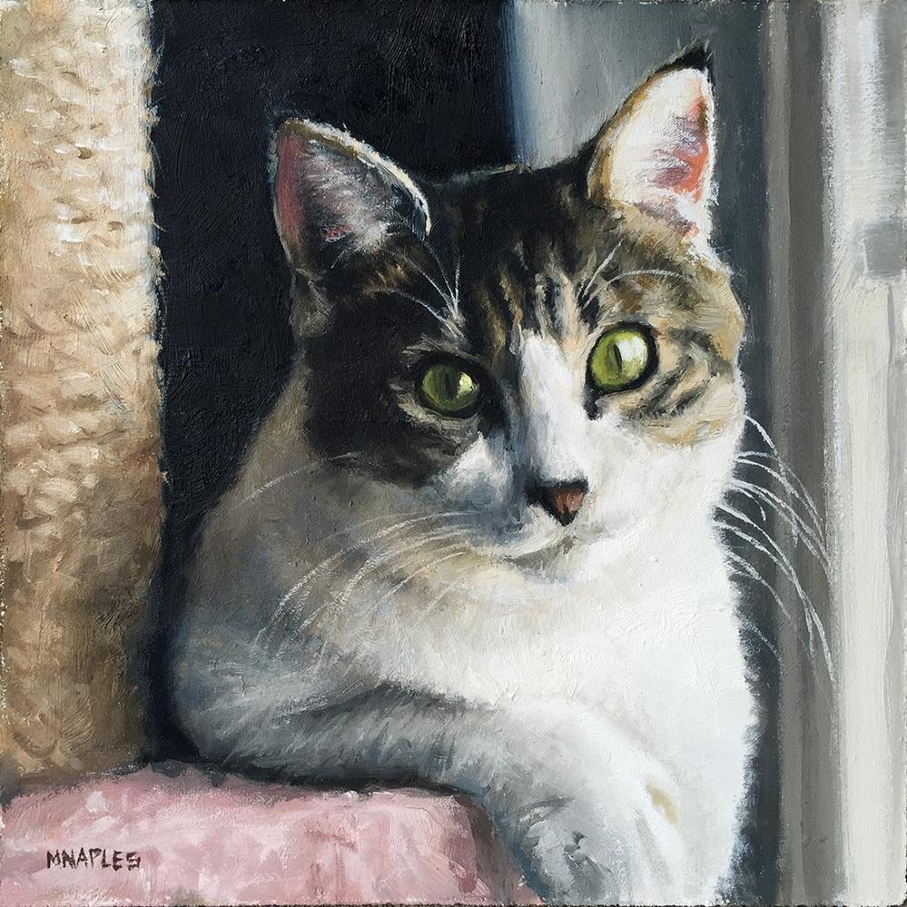 """Cat Commission No.3"" original fine art by Michael Naples"