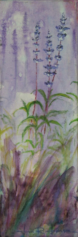 """Salvia Shadows"" original fine art by Jana Johnson"