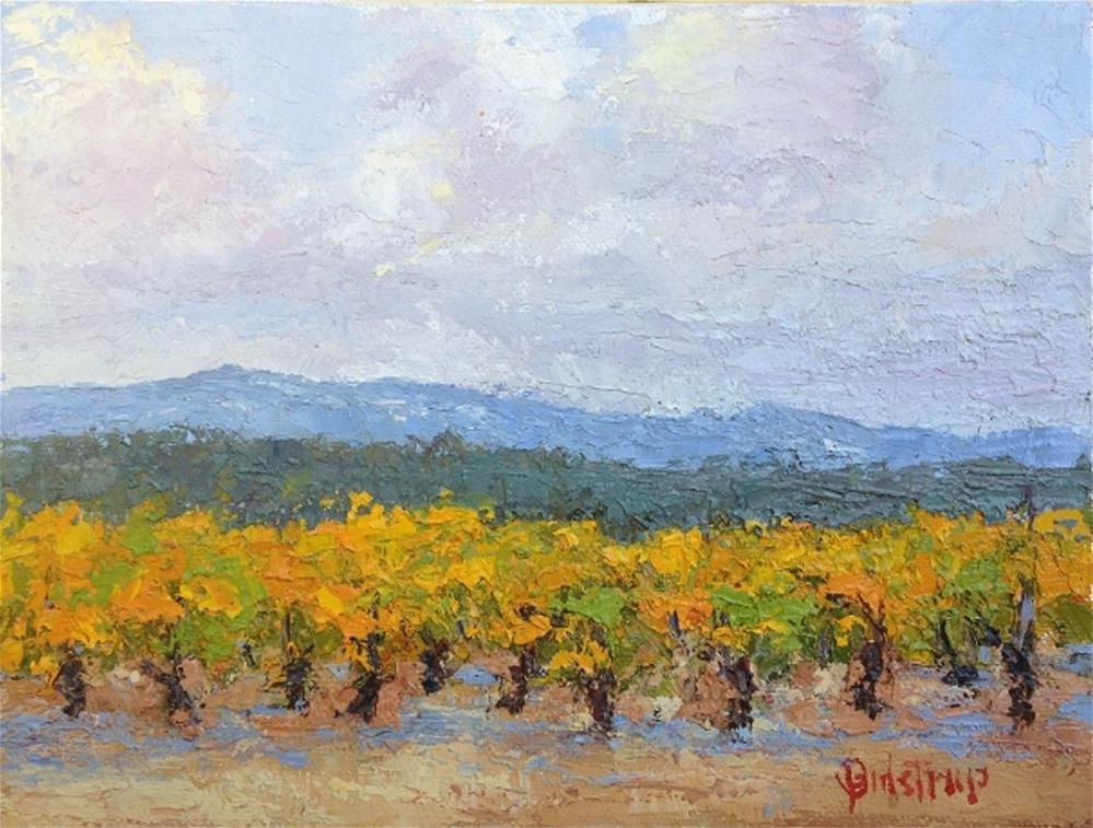 """Georgetown Vineyard"" original fine art by Mark Bidstrup"