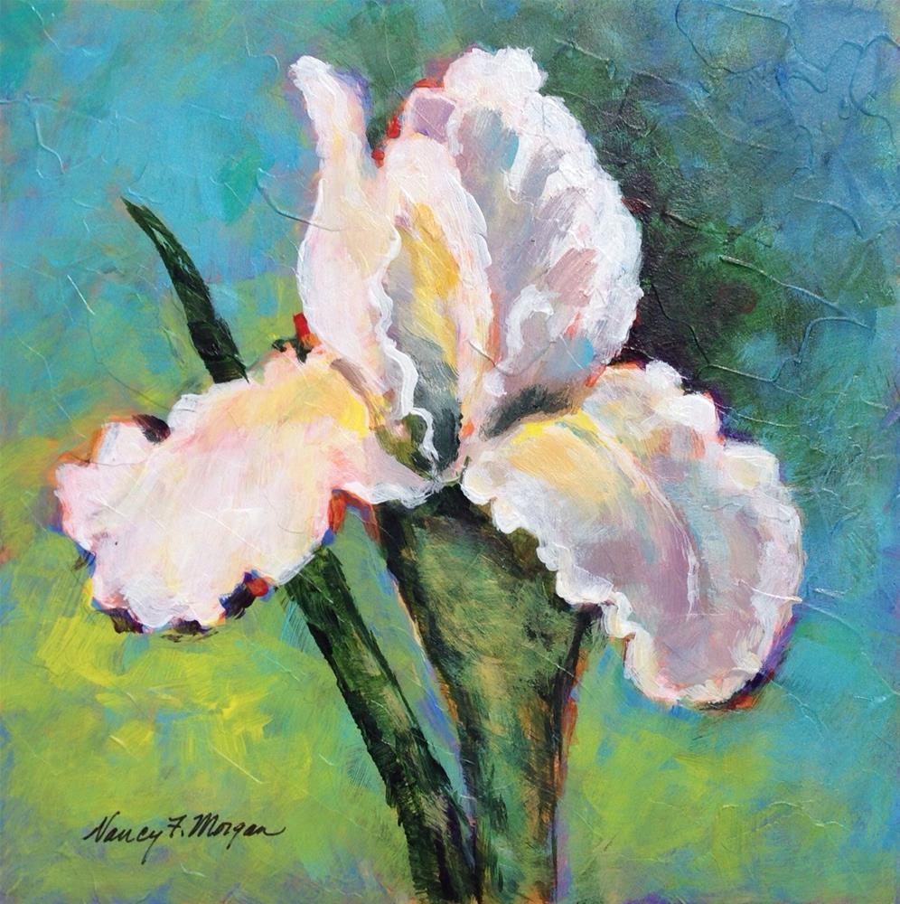 """""""White Iris"""" original fine art by Nancy F. Morgan"""