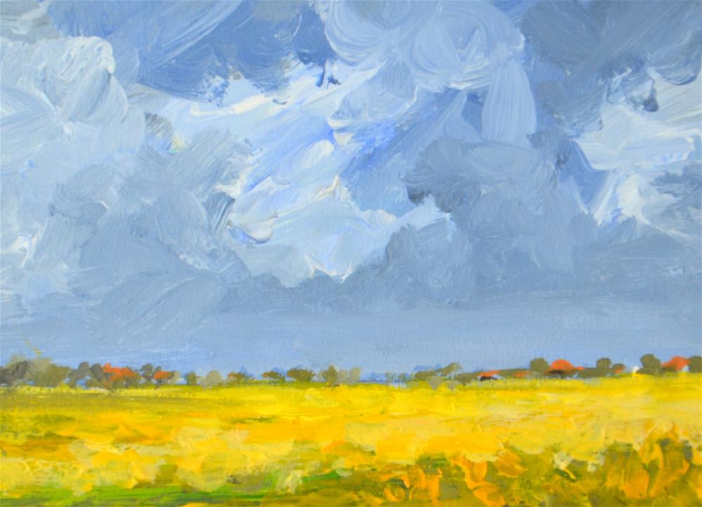 """Coleseedfields in the polder 3"" original fine art by Wim Van De Wege"