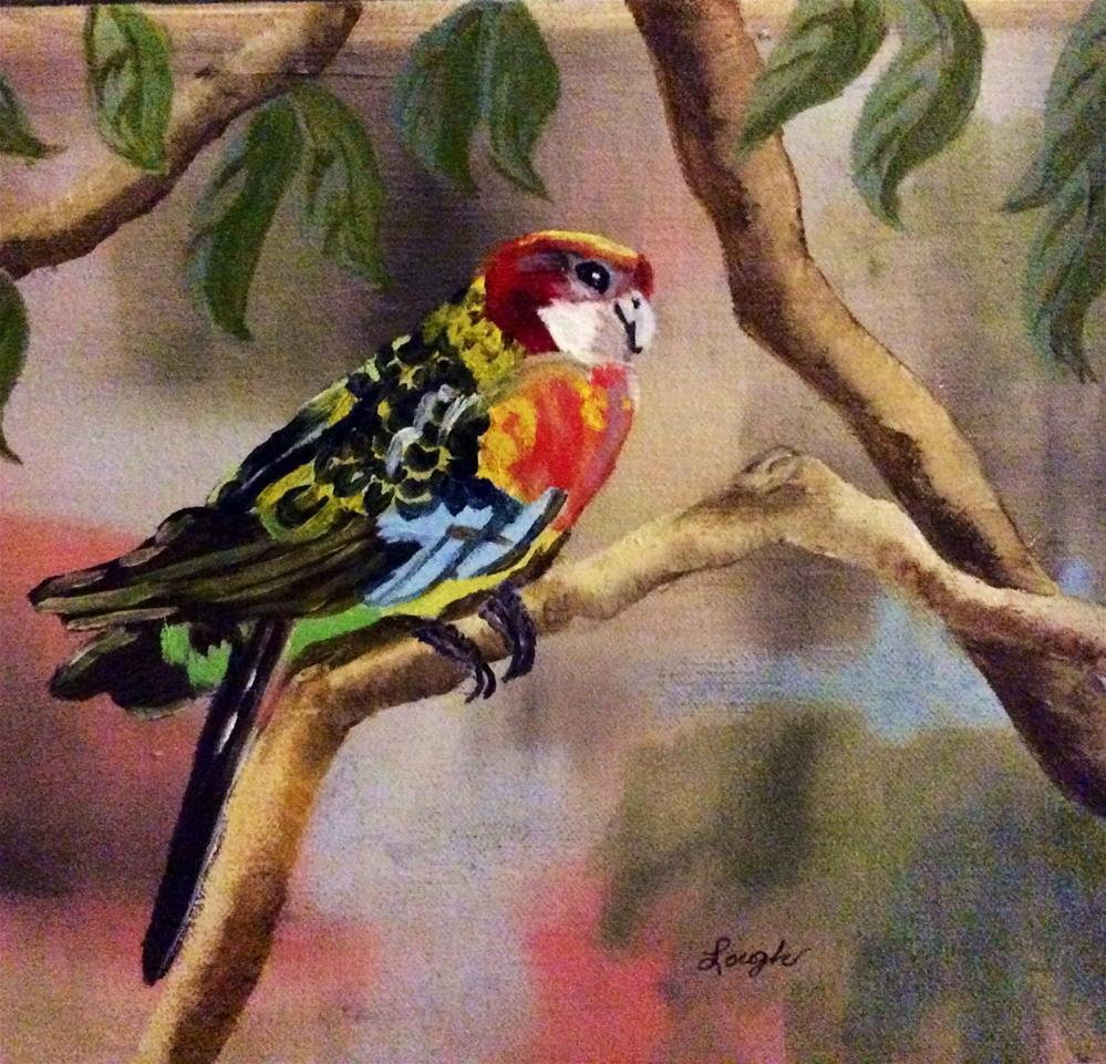 """Rosella Parrot"" original fine art by Charlotte Lough"