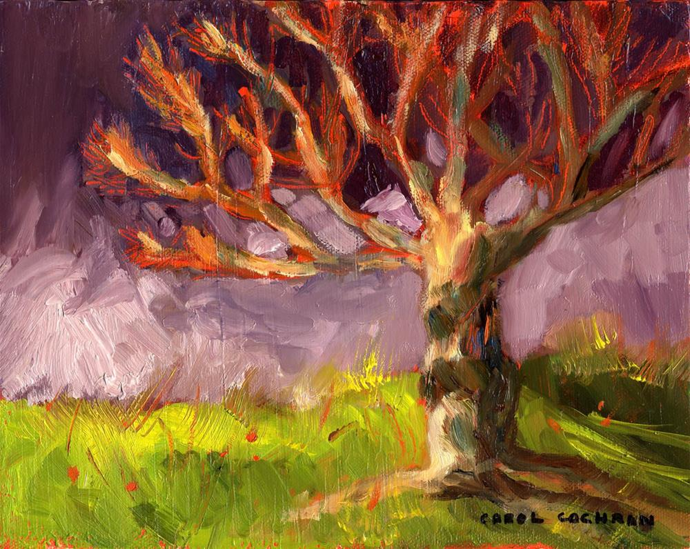 """Essence of Tree"" original fine art by Carol Cochran"