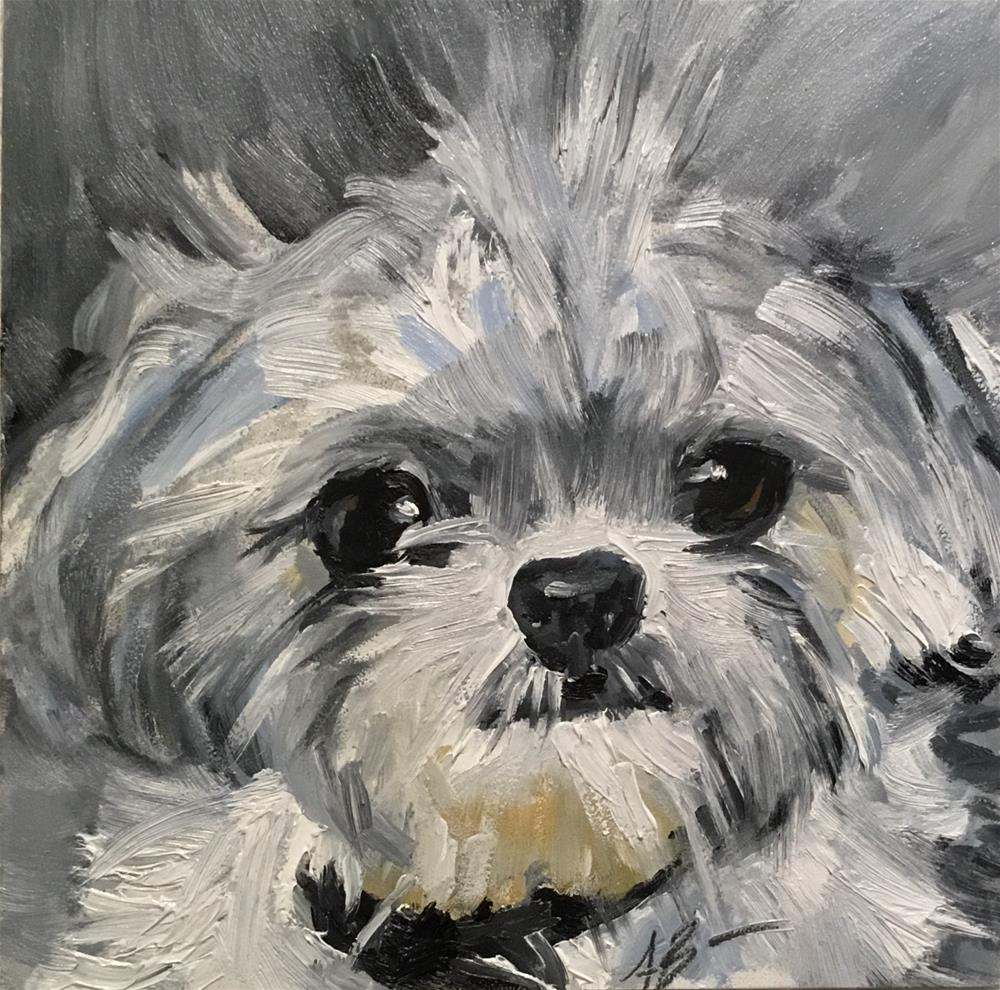 """Molly"" original fine art by Annette Balesteri"
