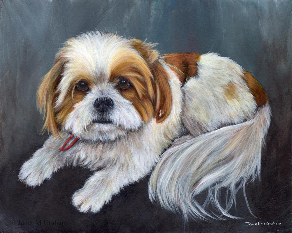 """Banjo"" original fine art by Janet Graham"