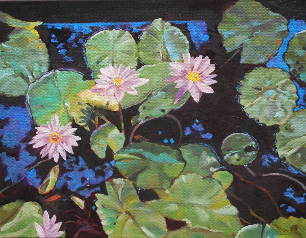 """Water lilies in fish pond"" original fine art by Beverley Phillips"