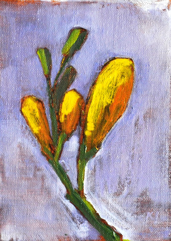 """Flower Painting- Yellow Freesia Buds"" original fine art by Kevin Inman"