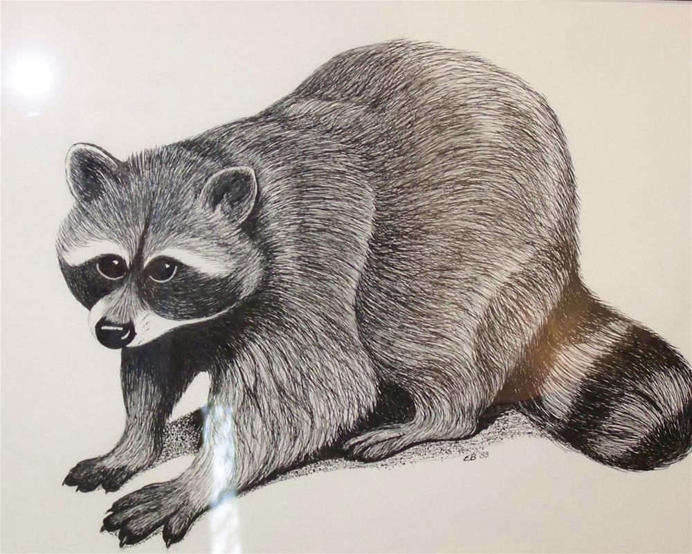 """Raccoon"" original fine art by Elaine Shortall"