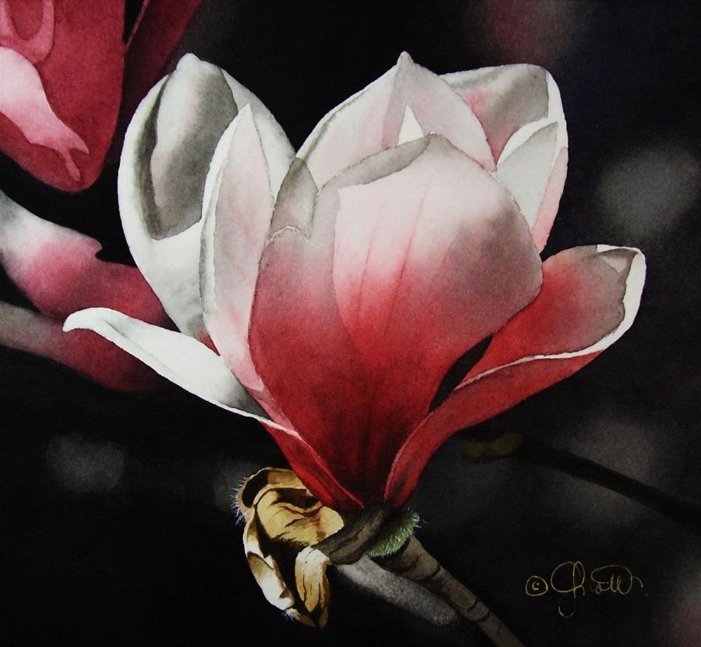 """Dramatic Magnolia"" original fine art by Jacqueline Gnott, TWSA, WHS"