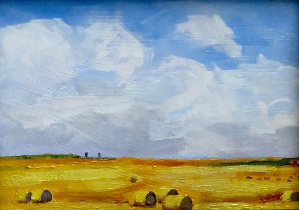 """FLATLANDS"" original fine art by Deborah Czernecky"