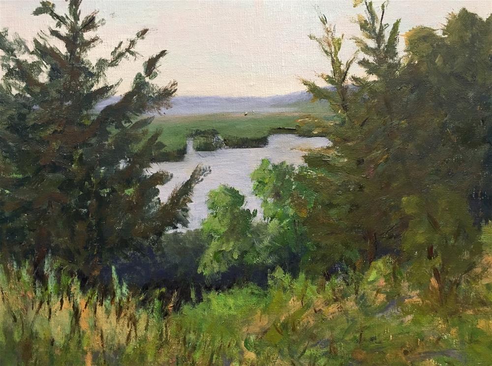 """The Overlook"" original fine art by Judith Anderson"